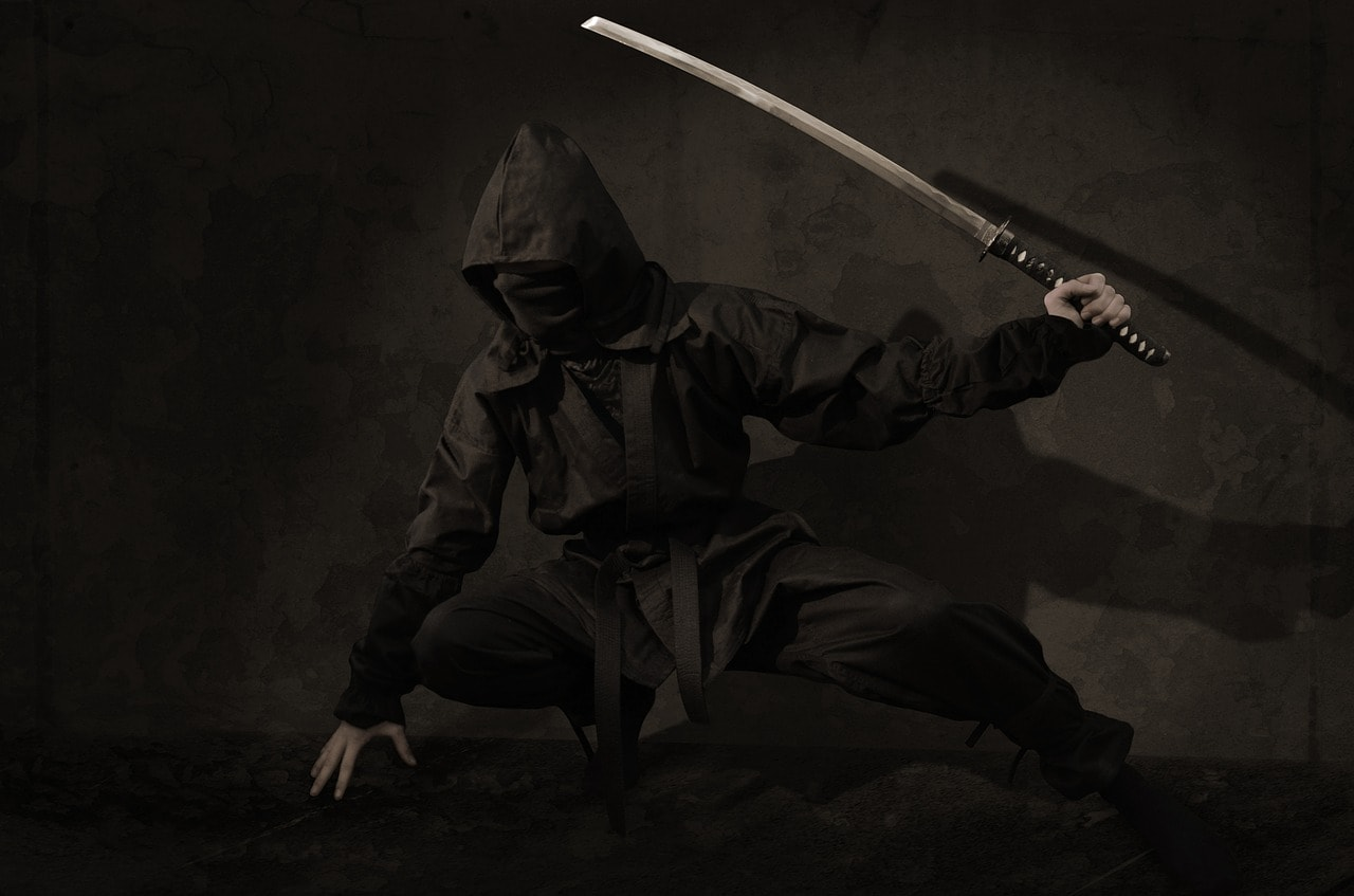 Photo of Ninja Shortage: Japan facing a shortage of skilled assassins