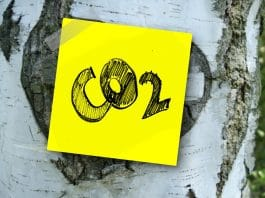 reducing carbon dioxide